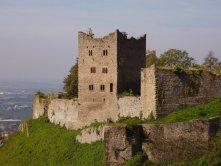 Burgruine Schauenburg (Oberkirch i. Schwarzwald)